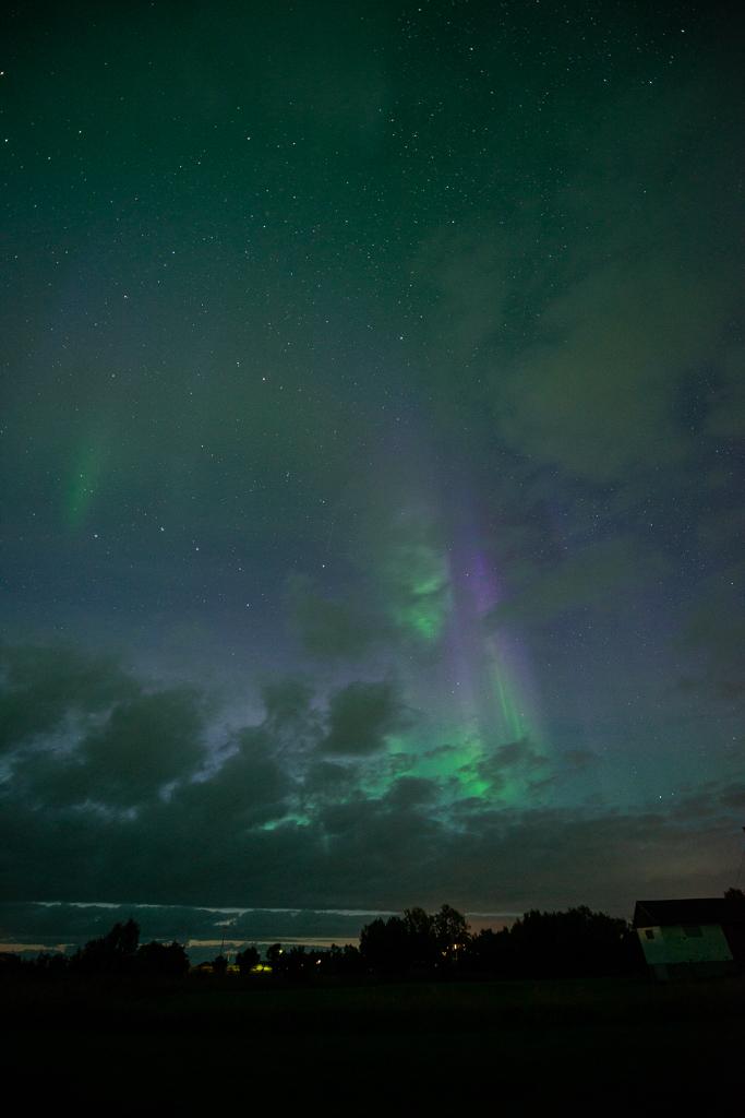 Paars noorderlicht, Lofoten, fotograaf: Toine Westen